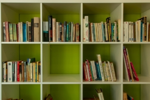 Bibliotheque - coin lecture-2